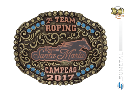9898F - Fivela Country 2º Team Roping Fazenda Santa Helena