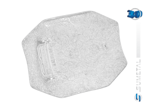 11453FJ PDC - Fivela Country PBR PROFESSIONAL BULL RIDERS