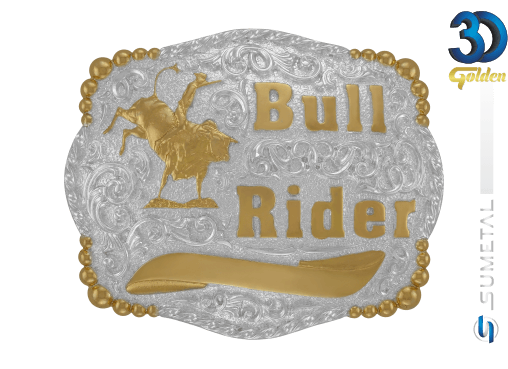 12164FJ PD - Fivela Country Bull Rider